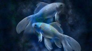 signo-de-peixes-data-e-personalidade