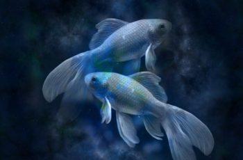 Signo de Peixes: Data e Personalidade